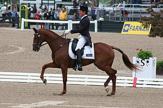 Kentucky Three-Day Event - Rider and horse during the Dressage test.