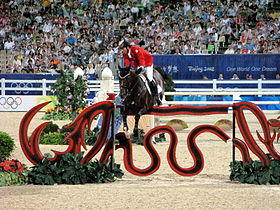 Image illustrative de l'article Hickstead (cheval)