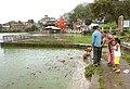 2010.India 667 feedingfishrewalsar.jpg