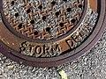 2011-365-243 Down the Drain (6103386672).jpg