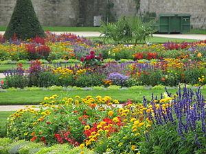Concours des villes et villages fleuris - Garden in Vannes (4 flowers).