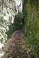 2012-10-26 13-12-58 Pentax JH (49282316686).jpg