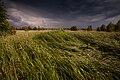20120612-Остров Юршинский. Перед дождём.jpg