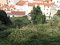 20121023 0018 Lisbon.jpg