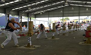 Royal Melbourne Show - Wood chopping contest