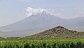 2014 Prowincja Ararat, Widok na Mały Ararat (05).jpg