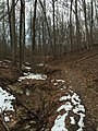 2016-02-08 14 23 08 View north up a tributary of Little Difficult Run and along the Gerry Connolly Cross County Trail between Vale Road and Lawyers Road in Reston, Fairfax County, Virginia.jpg