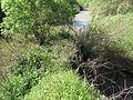 2017-03-28 The confluence Algibre River and Alte River, Alcaria, Albufeira.JPG