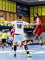 20170114 Handball AUT SUI 6303.jpg