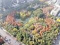 20191211钱江新城森林公园.jpg