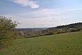 20210417 Naturschutzgebiet Wolferskopf 06.jpg