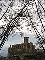 330 Santa Maria de Manresa, des de la Cova de Sant Ignasi.jpg