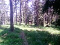 353 01 Mnichov, Czech Republic - panoramio (9).jpg