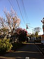 4 Chome Sazumachi, Chōfu-shi, Tōkyō-to 182-0016, Japan - panoramio (10).jpg