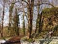 63046-CLT-0004-01 Oude wallen Limbourg.jpg