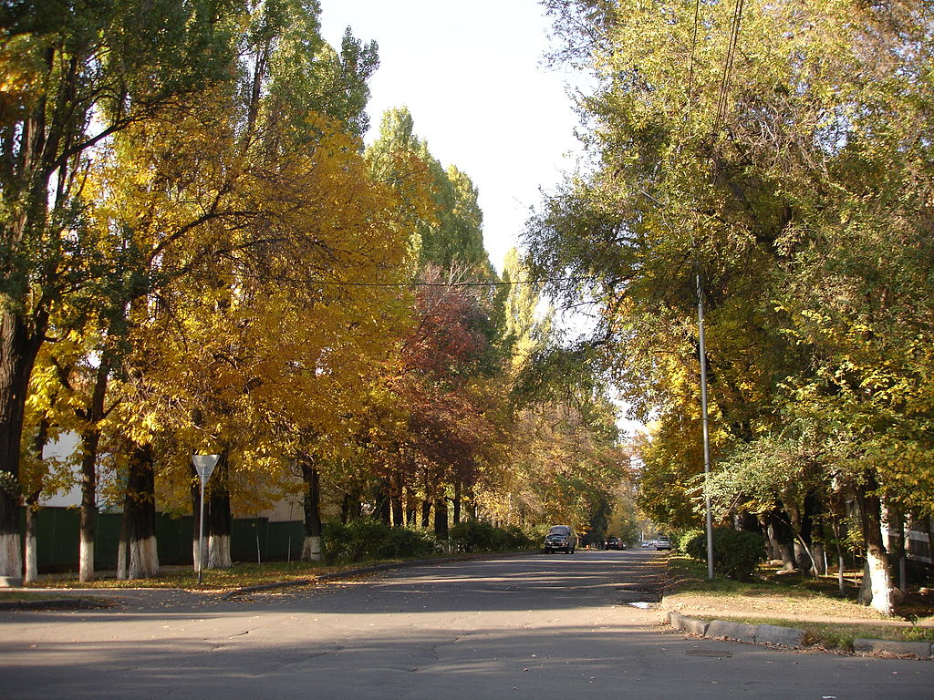 Almaty leafy boulevard