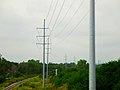 ATC Power Line - panoramio (68).jpg