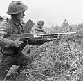 A Bren gunner of the 8th Royal Scots at Moostdijk, Holland, 6 November 1944. B11758.jpg