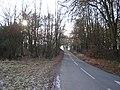 A Lane near Northington Down Farm - geograph.org.uk - 99081.jpg