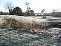 A frosty scene at Portsmouth Water Company - geograph.org.uk - 1072326.jpg