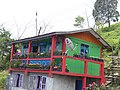 A homes with potted plants in Darjeeling AJTJ P1110477.jpg