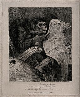 A humorous image of a 'monkey' wearing spectacles reading th Wellcome V0015842