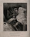 A humorous image of a 'monkey' wearing spectacles reading th Wellcome V0015842.jpg