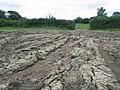 A lot of mud - geograph.org.uk - 515673.jpg
