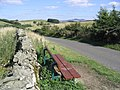 A welcome bench seat near Stintyknowe - geograph.org.uk - 237050.jpg