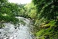 Afon Llugwy - geograph.org.uk - 1437175.jpg