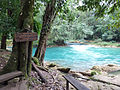 Agua Azul (8264754950).jpg