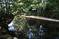 Aldeias e Margens do Rio Ovelha XXII (35822749944).jpg
