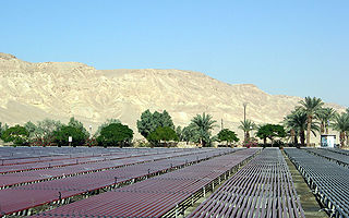 Agricultural research in Israel