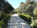 Allée dans le zoo de Lunaret (2363290415).jpg