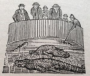 Lafcadio Hearn - Alligators: Cartoon published in New Orleans Daily Item on 13 September 1880