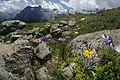Alpy, Švýcarsko, imgp1545 (2018-08).jpg