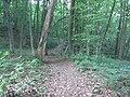 Alytus, Lithuania - panoramio (12).jpg