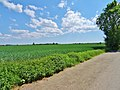 Am Feld - Pirna Sonnenstein (Straße hat keinen Namen) (40493778680).jpg