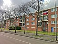Amsterdam-Noord - Botterstraat.JPG