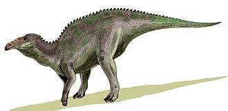 Edmontosaurus - E. annectens in a quadrupedal pose
