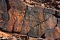 Ancient Aboriginal symbols, Chambers Gorge, South Australia (49664870858).jpg