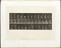 Animal locomotion. Plate 215 (Boston Public Library).jpg