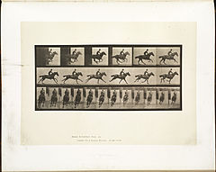 Animal locomotion. Plate 633 (Boston Public Library).jpg
