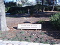 Anna freud garden, givat ram campus of hebrew u. (356988105).jpg