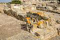 Archaeological site Nora - Pula - Sardinia - Italy - 19.jpg