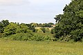 Area of long grass at east of Woodland Trust wood Theydon Bois Essex England.JPG