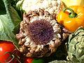 Artichoke, artichoke flower, peppers, cabage, DSCF1627.jpg