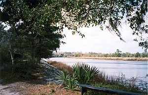 Ashley River (South Carolina) - The Ashley River, as seen from Drayton Hall.