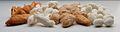 Assamese Cocoons - Samia cynthia Red - Samia cynthia White - Antheraea assamensis - Bombyx mori - Kolkata 2013-06-04 8565.JPG