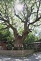 Atsuta jingu shrine , 熱田神宮 - panoramio (3).jpg